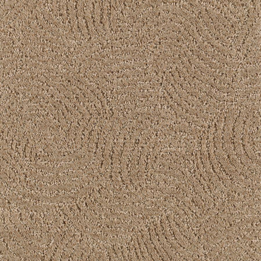 STAINMASTER Fashionboro Essentials Nougat Cut and Loop Carpet Sample