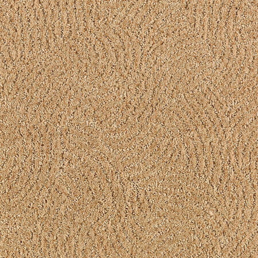 STAINMASTER Fashionboro Essentials Spiced Tea Cut and Loop Carpet Sample