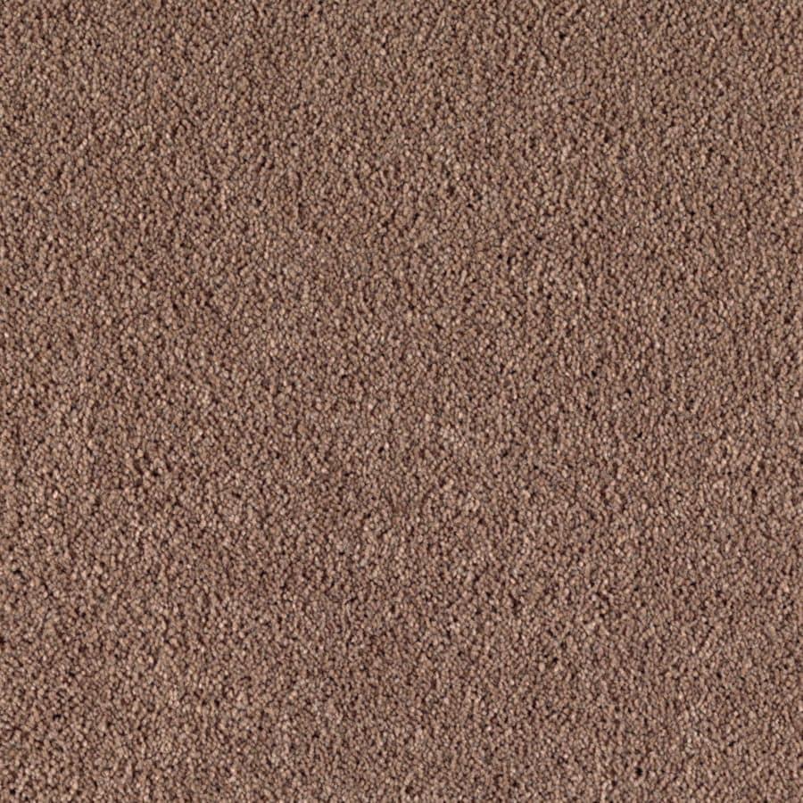 STAINMASTER Dream Big I Essentials Wooden Shoe Plus Carpet Sample