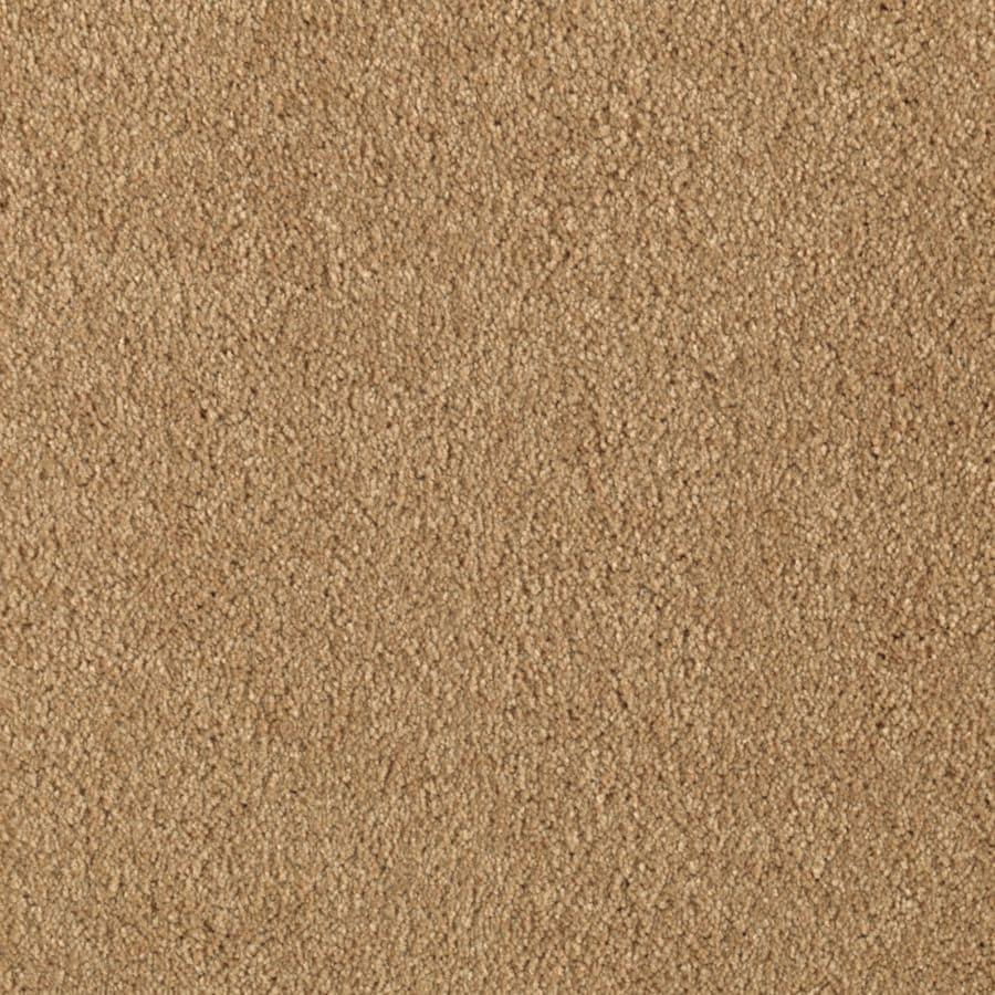 STAINMASTER Dream Big II Essentials Sun Tea Plus Carpet Sample
