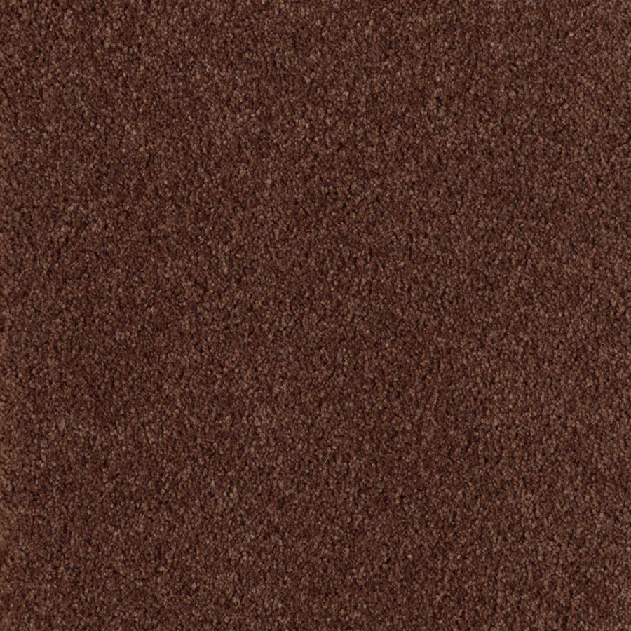 STAINMASTER Dream Big II Essentials Rocky Ridge Plus Carpet Sample