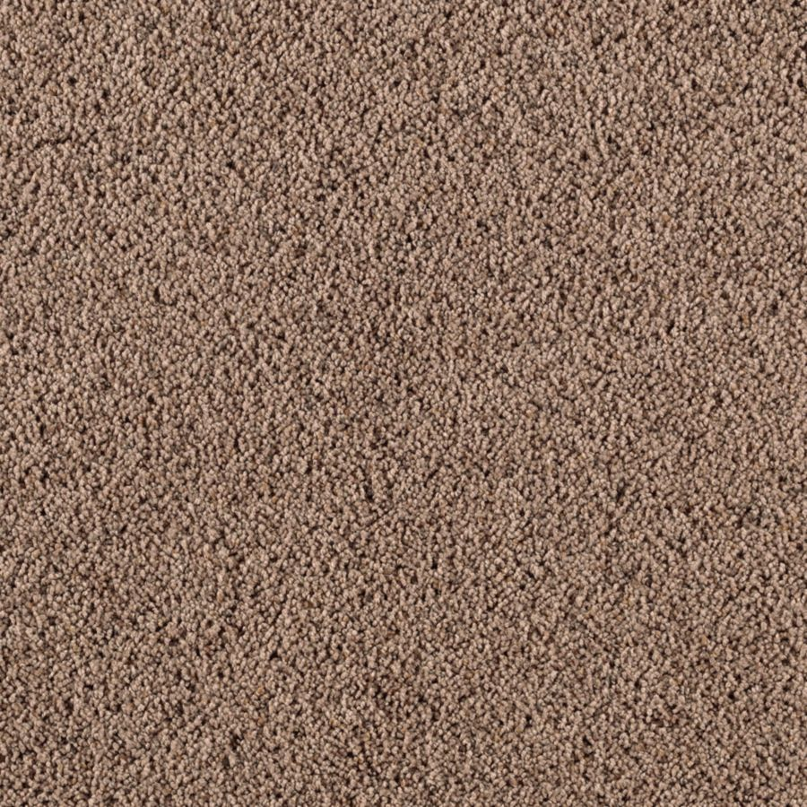 STAINMASTER Renewed Style II Essentials Rocky Ridge Frieze Carpet Sample