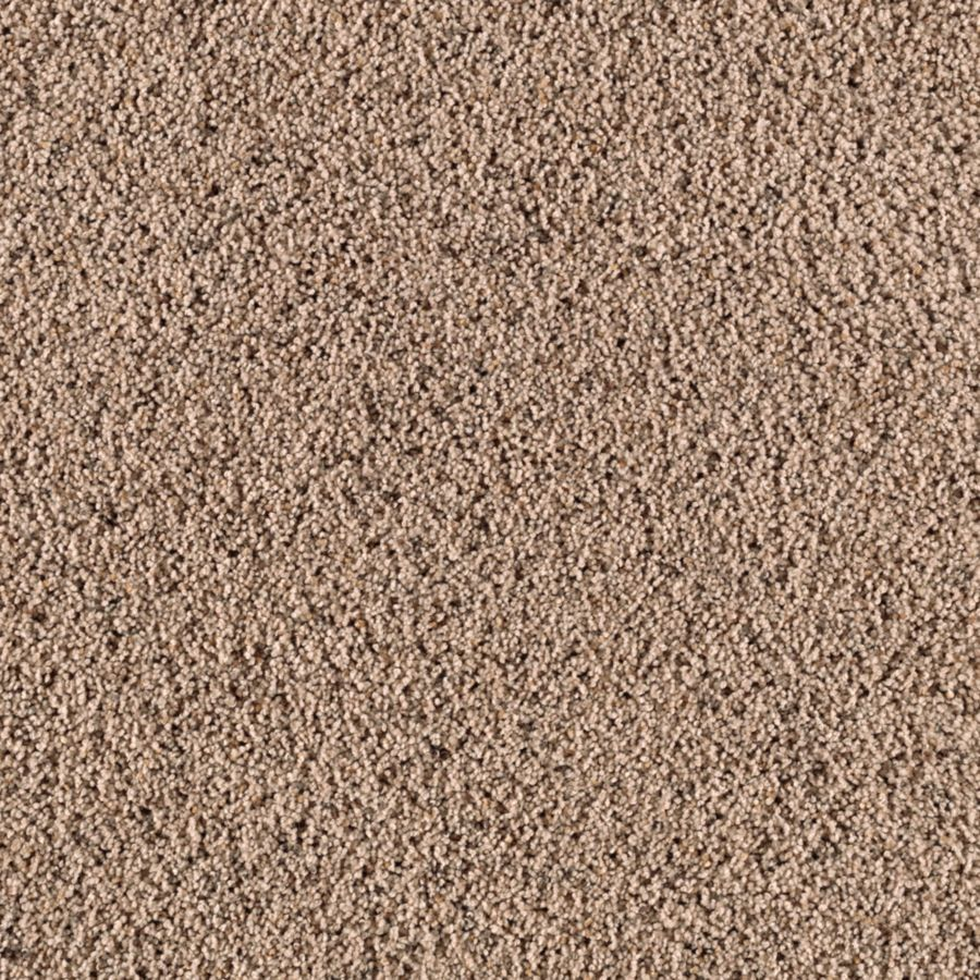 STAINMASTER Renewed Style II Essentials Dry Dock Frieze Carpet Sample