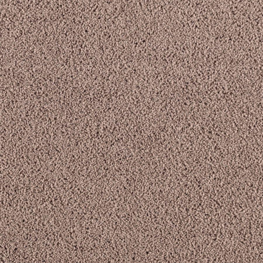 STAINMASTER Renewed Touch I Essentials Temptation Plus Carpet Sample
