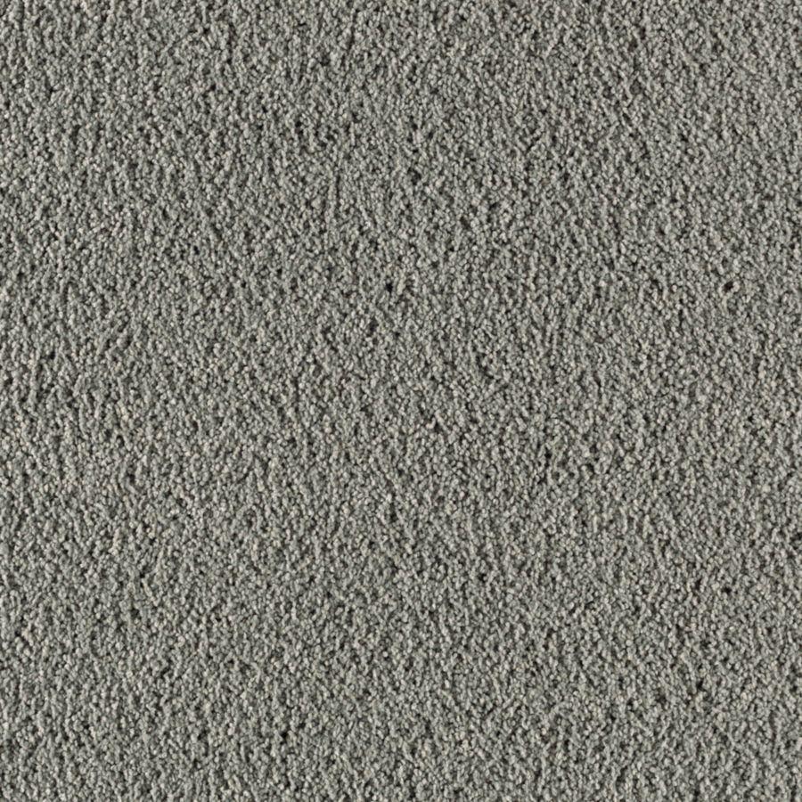 STAINMASTER Renewed Touch II Essentials Street Flair Plus Carpet Sample