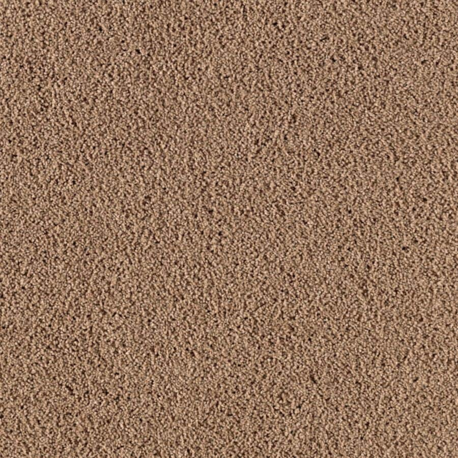 STAINMASTER Renewed Touch III Essentials Daring Plus Carpet Sample