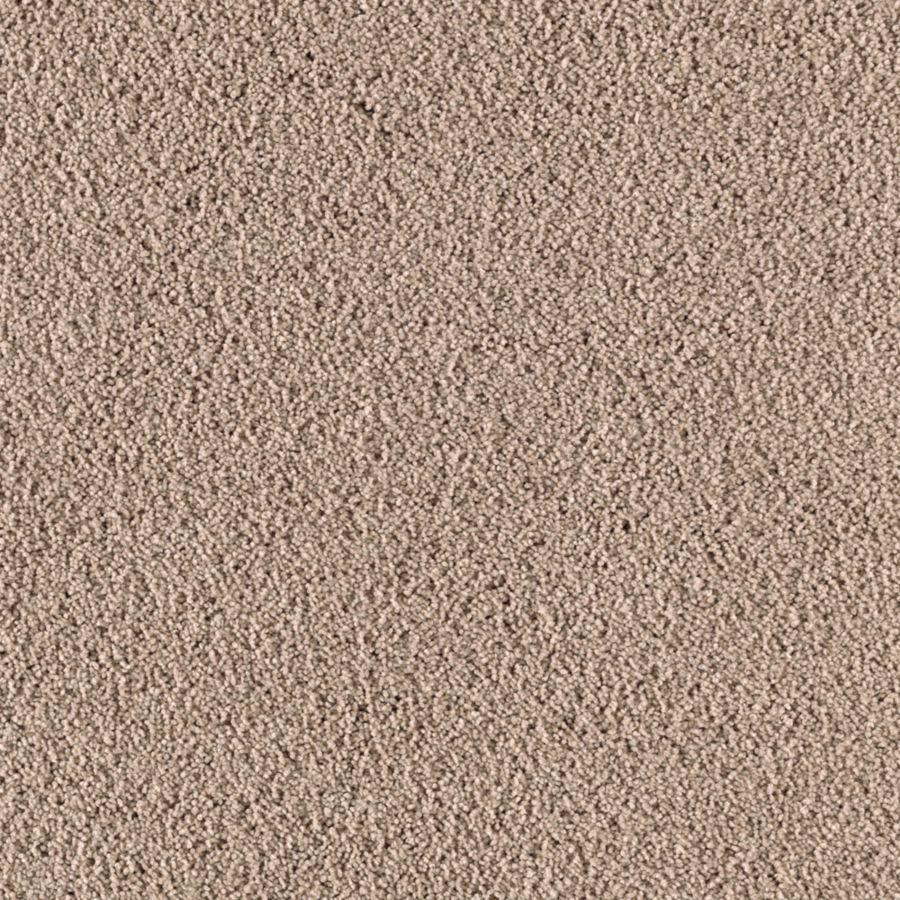 STAINMASTER Renewed Touch III Essentials Acorn Plus Carpet Sample