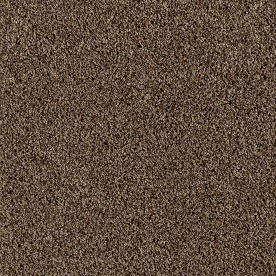 STAINMASTER Beautiful Design I Essentials Leatherwood Plus Carpet Sample