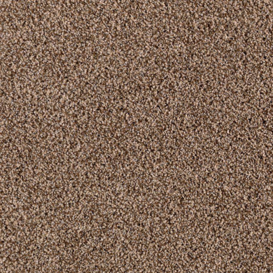 STAINMASTER Beautiful Design II Essentials Falcon Beige Plus Carpet Sample