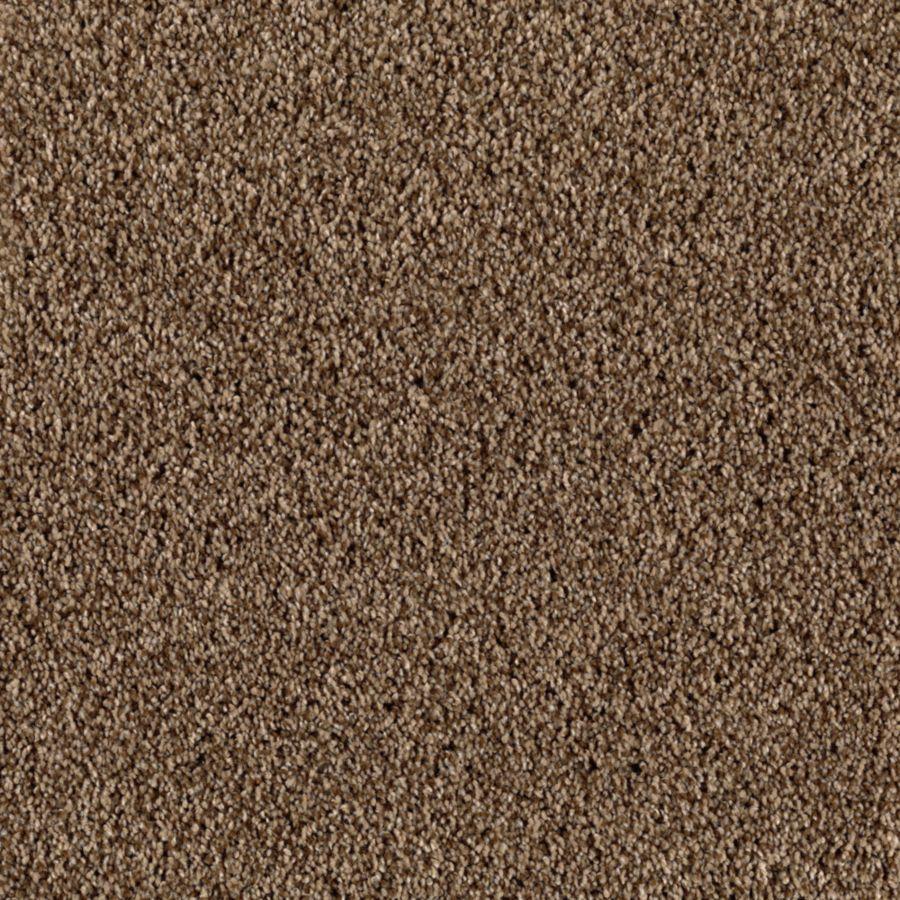 STAINMASTER Beautiful Design III Essentials Bedford Road Plus Carpet Sample
