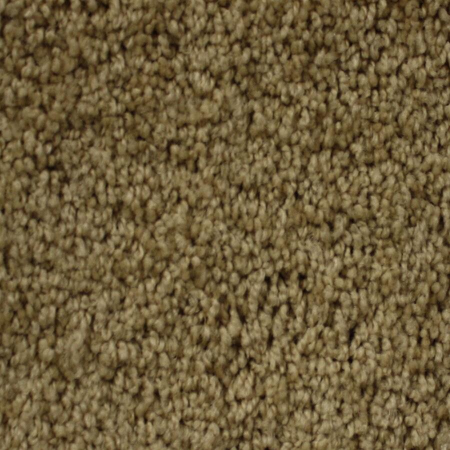 STAINMASTER Nitro PetProtect Cosmic Plus Carpet Sample