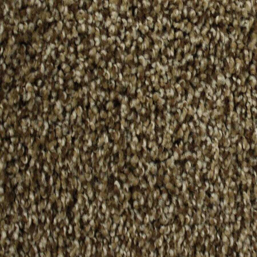STAINMASTER Nitro PetProtect Milky Way Plus Carpet Sample