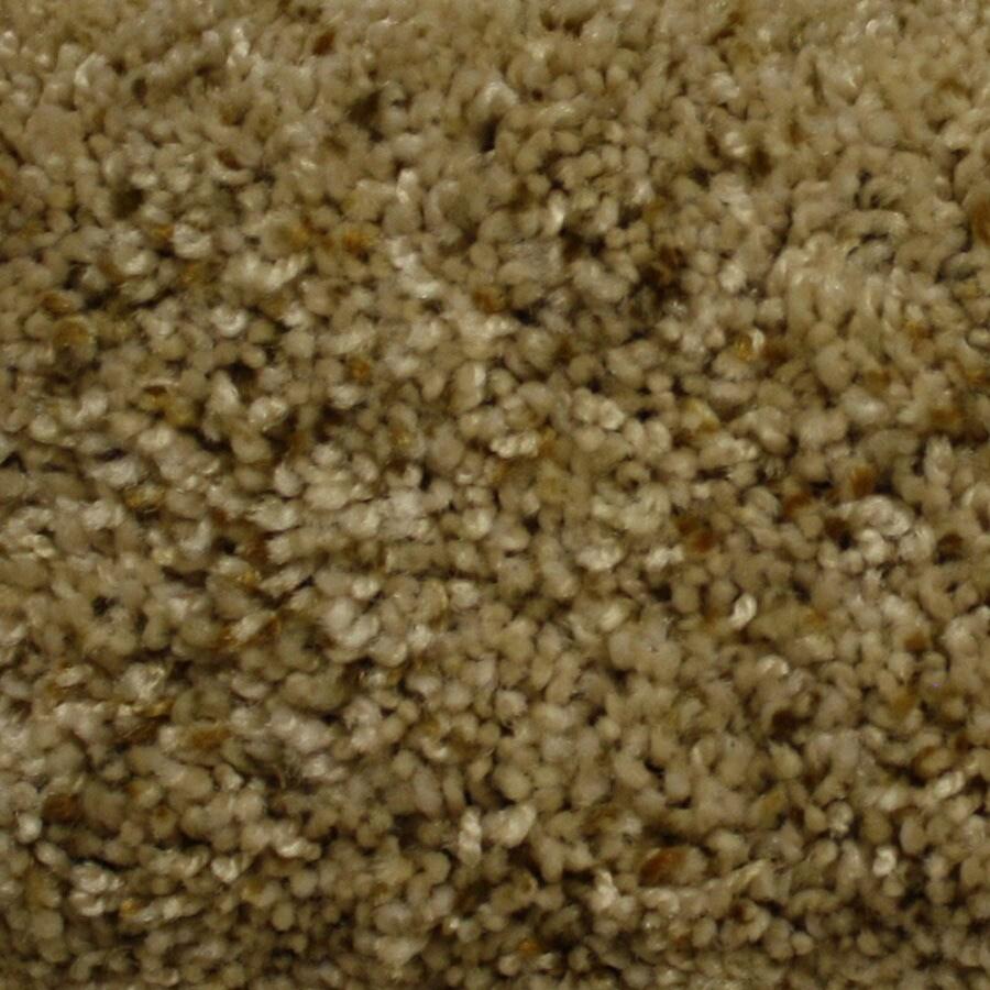 STAINMASTER Lexington PetProtect Custom Design Plus Carpet Sample