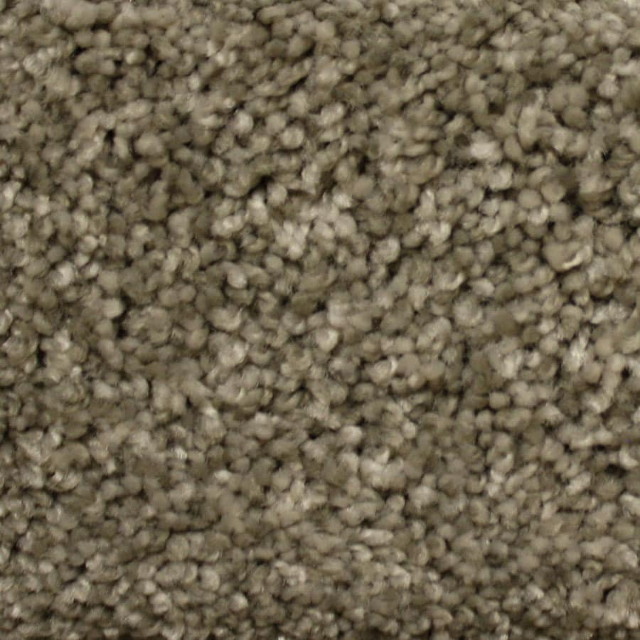 STAINMASTER Lexington PetProtect Millspring Plus Carpet Sample