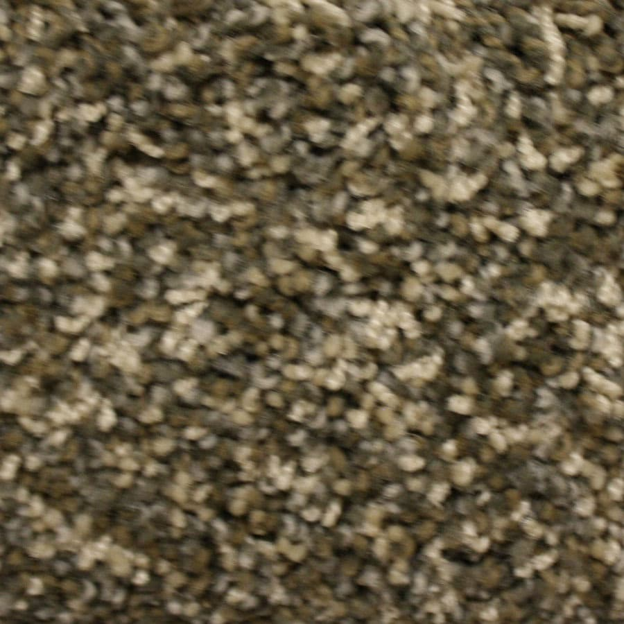 STAINMASTER Lexington PetProtect North Ridgeline Plus Carpet Sample