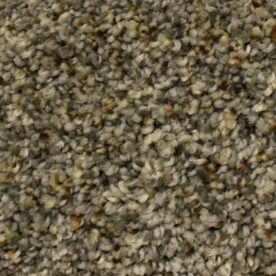 STAINMASTER Lexington PetProtect First Launch Plus Carpet Sample