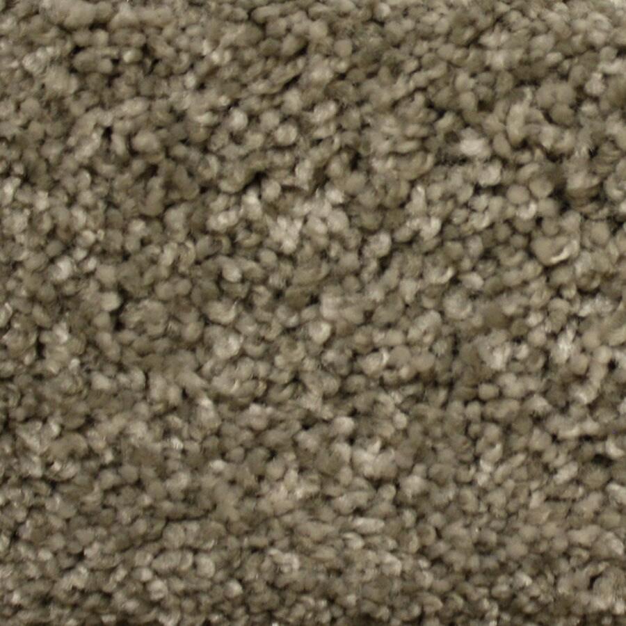 STAINMASTER Georgetown PetProtect Millspring Plus Carpet Sample