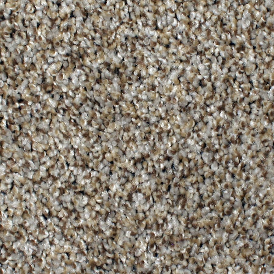 STAINMASTER Concord Petprotect Mystical Charm Plus Carpet Sample