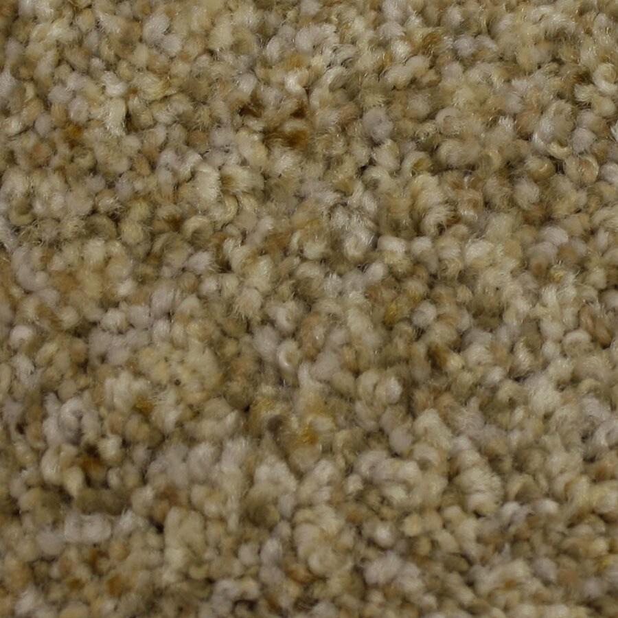 STAINMASTER Side Kick Petprotect Loyalty Plus Carpet Sample