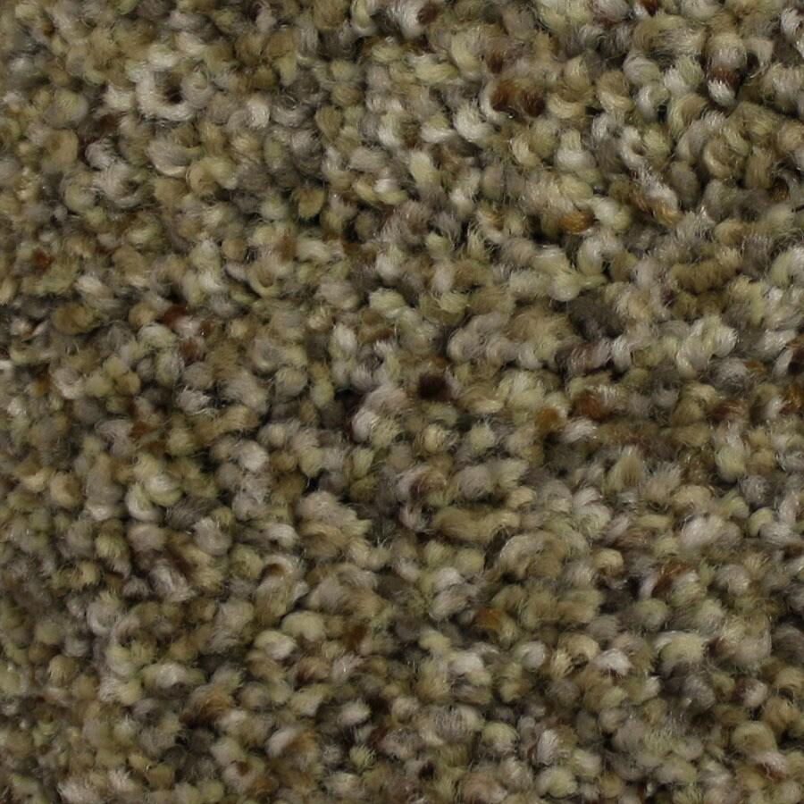 STAINMASTER Side Kick Petprotect Mentor Plus Carpet Sample
