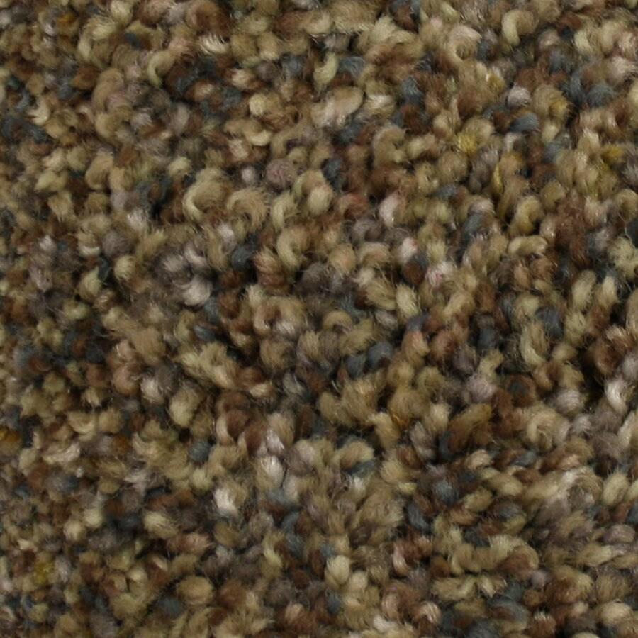 STAINMASTER Kindred Spirit PetProtect Friendship Plus Carpet Sample