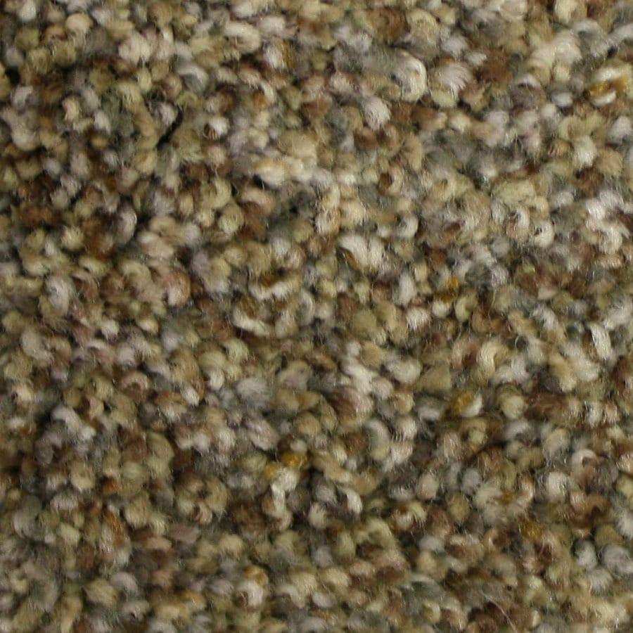 STAINMASTER Kindred Spirit PetProtect Rare Find Plus Carpet Sample