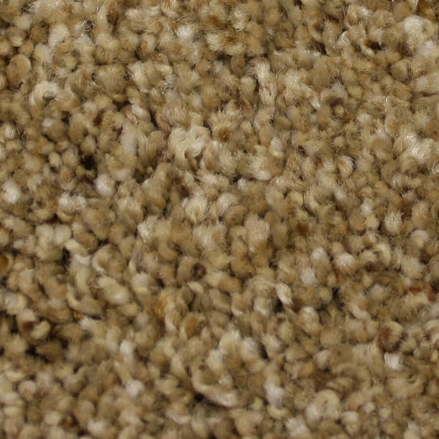 STAINMASTER Soul Mate Petprotect Reliable Plus Carpet Sample