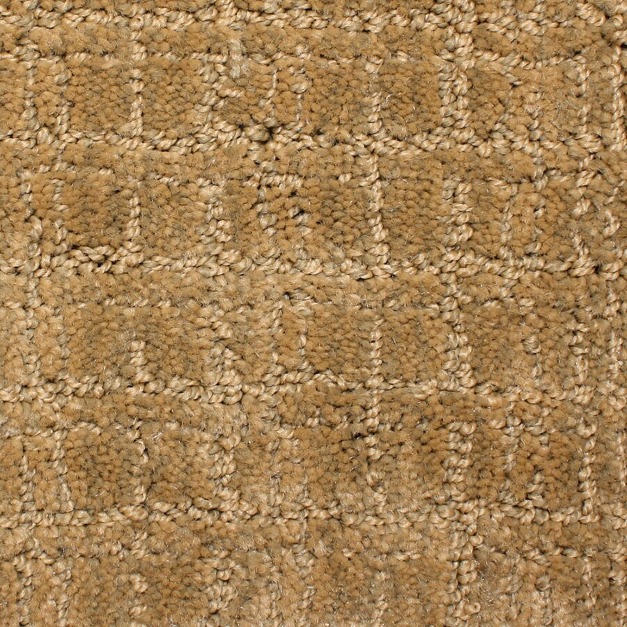 STAINMASTER Park Lane PetProtect Stately Cut and Loop Carpet Sample