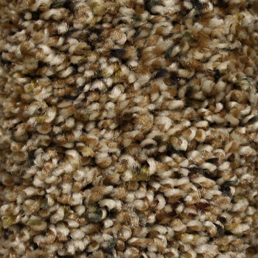 STAINMASTER Valmeyer Essentials Chipstead Plus Carpet Sample
