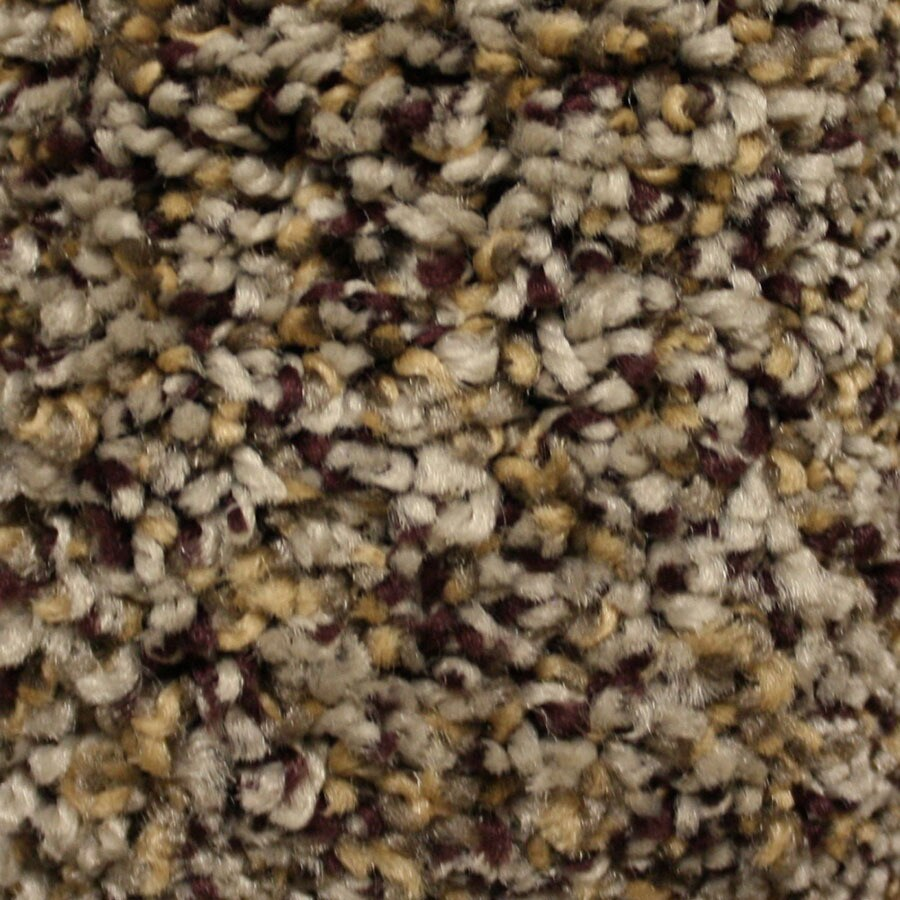 STAINMASTER Valmeyer Essentials North Downs Plus Carpet Sample