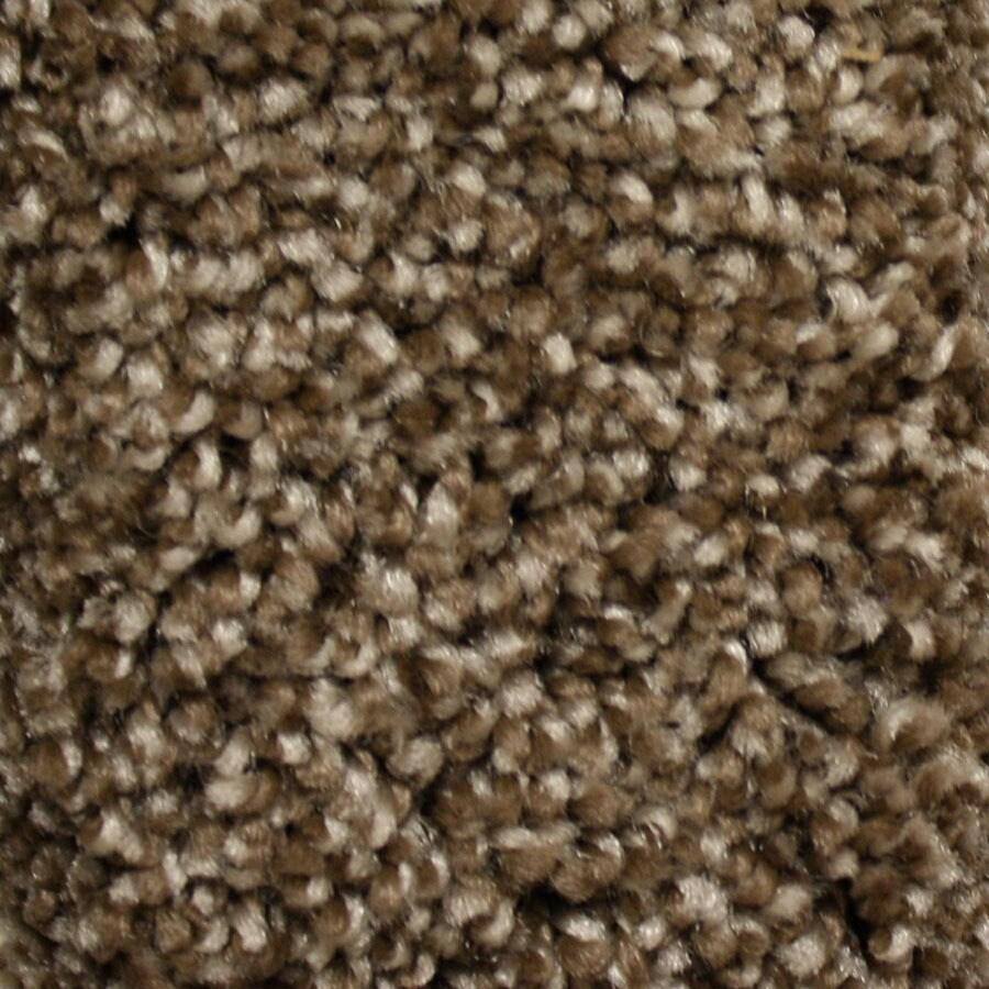 STAINMASTER Summer Essentials Peak Time Plus Carpet Sample