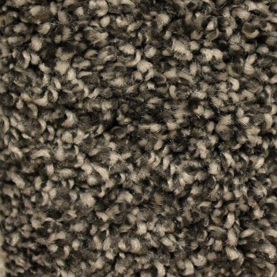 STAINMASTER Summer Essentials Dominated Plus Carpet Sample