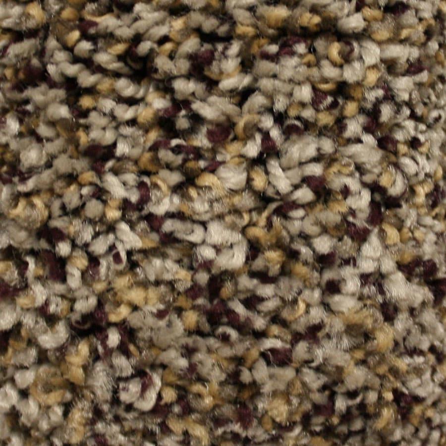 STAINMASTER Summer Essentials North Downs Plus Carpet Sample