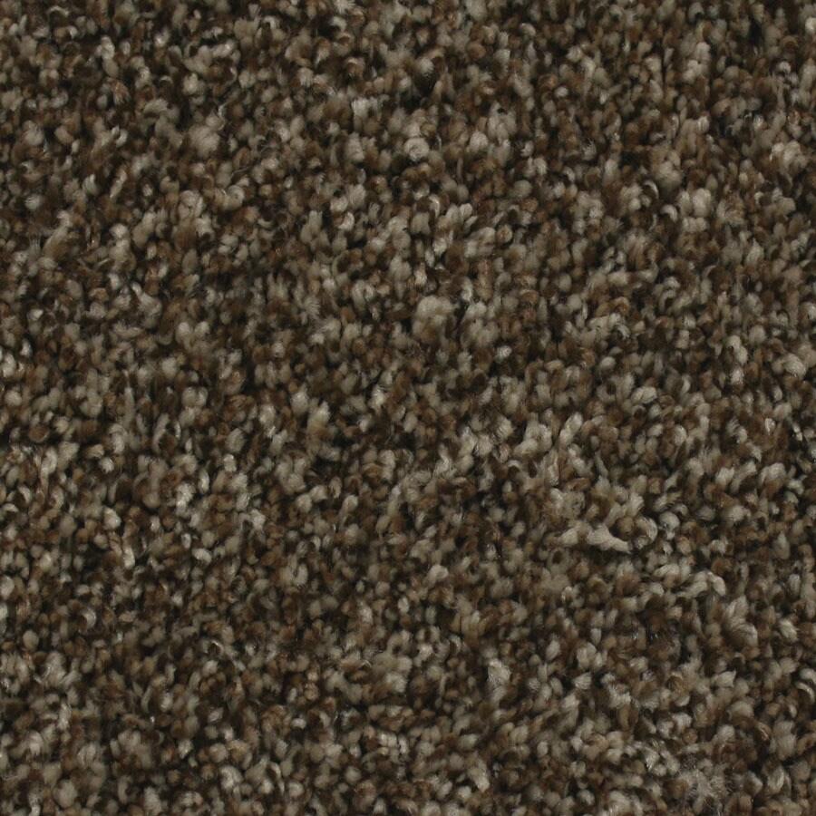 STAINMASTER Nolin Essentials Sand Storm Plus Carpet Sample