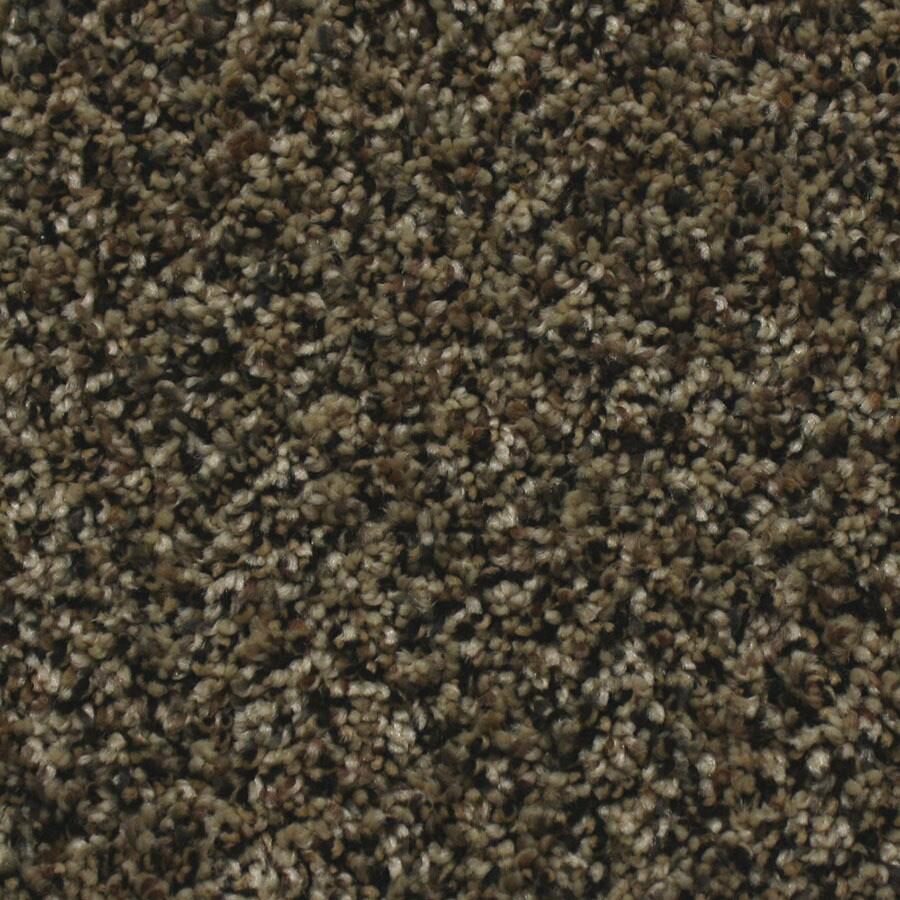 STAINMASTER Nolin Essentials Brazil Nut Plus Carpet Sample
