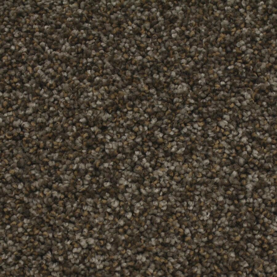 STAINMASTER Nolin Essentials Majestic Plus Carpet Sample