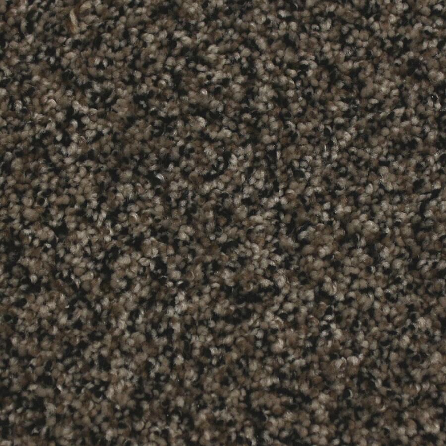 STAINMASTER Nolin Essentials Fur Coat Plus Carpet Sample