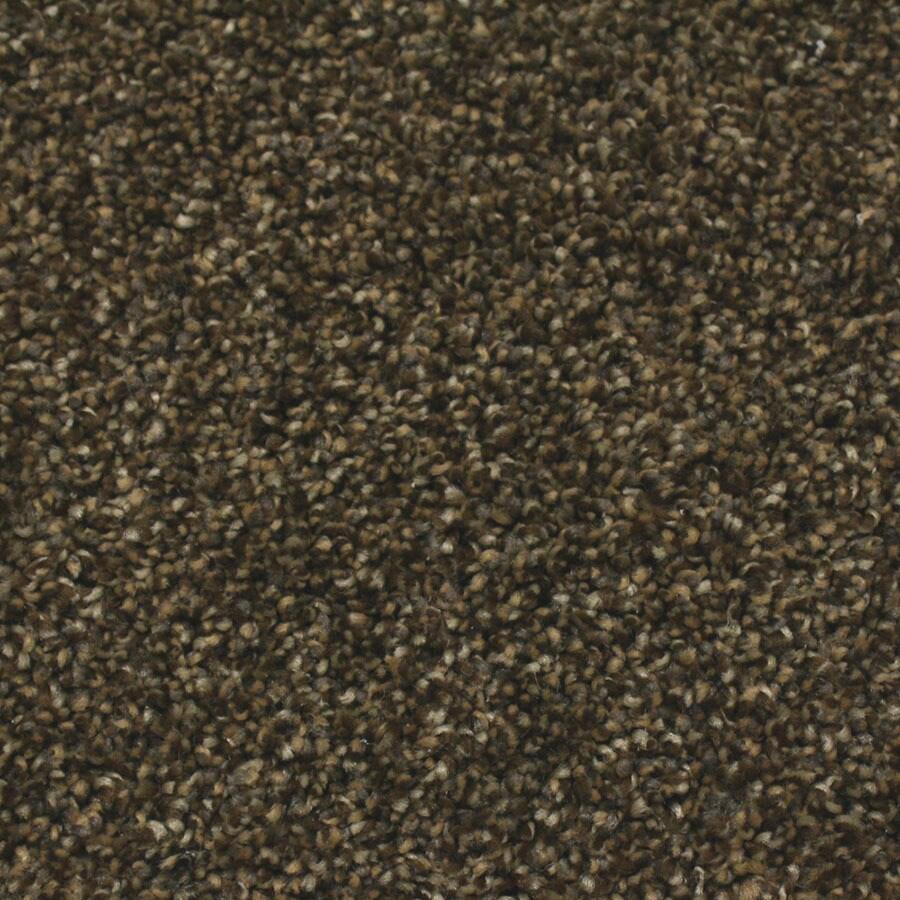 STAINMASTER Nolin Essentials Prairie Plus Carpet Sample