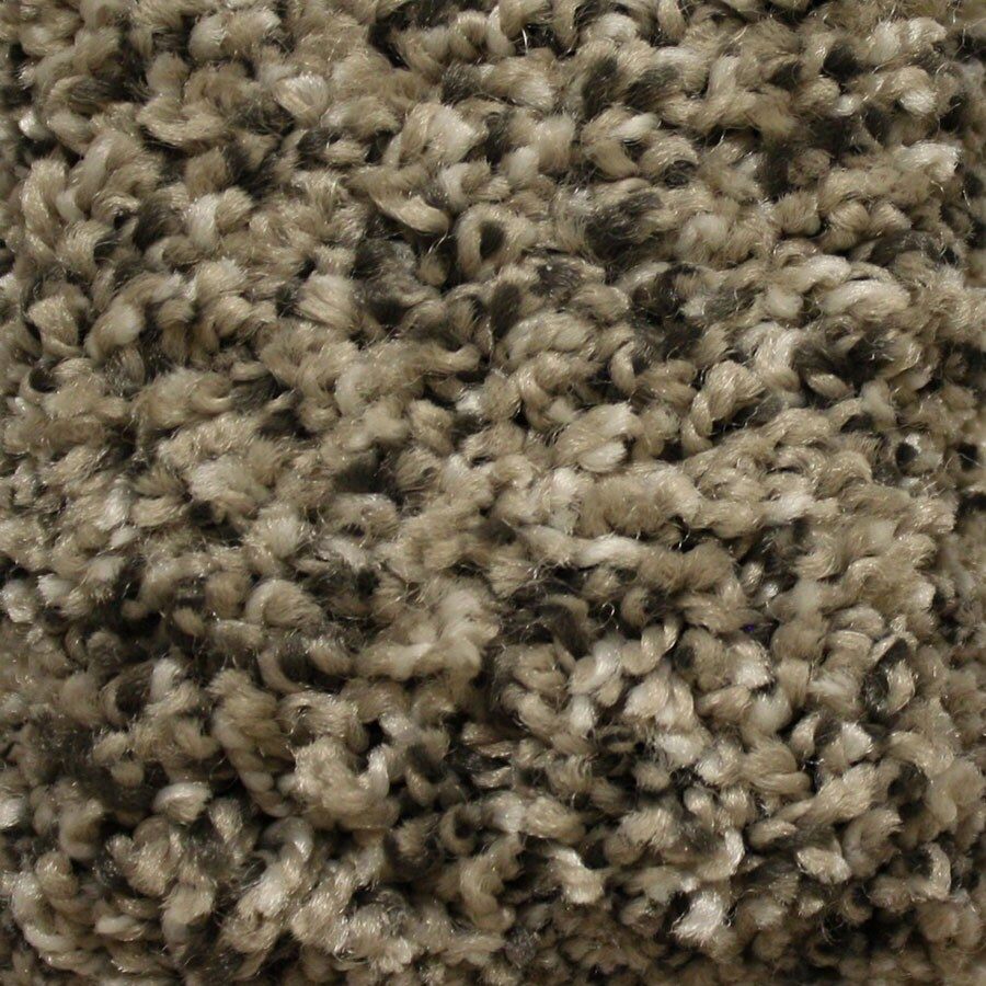 STAINMASTER Summer Express Essentials Stoat's Nest Plus Carpet Sample