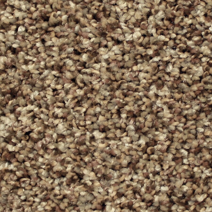 STAINMASTER Channing Essentials Good Fortune Plus Carpet Sample