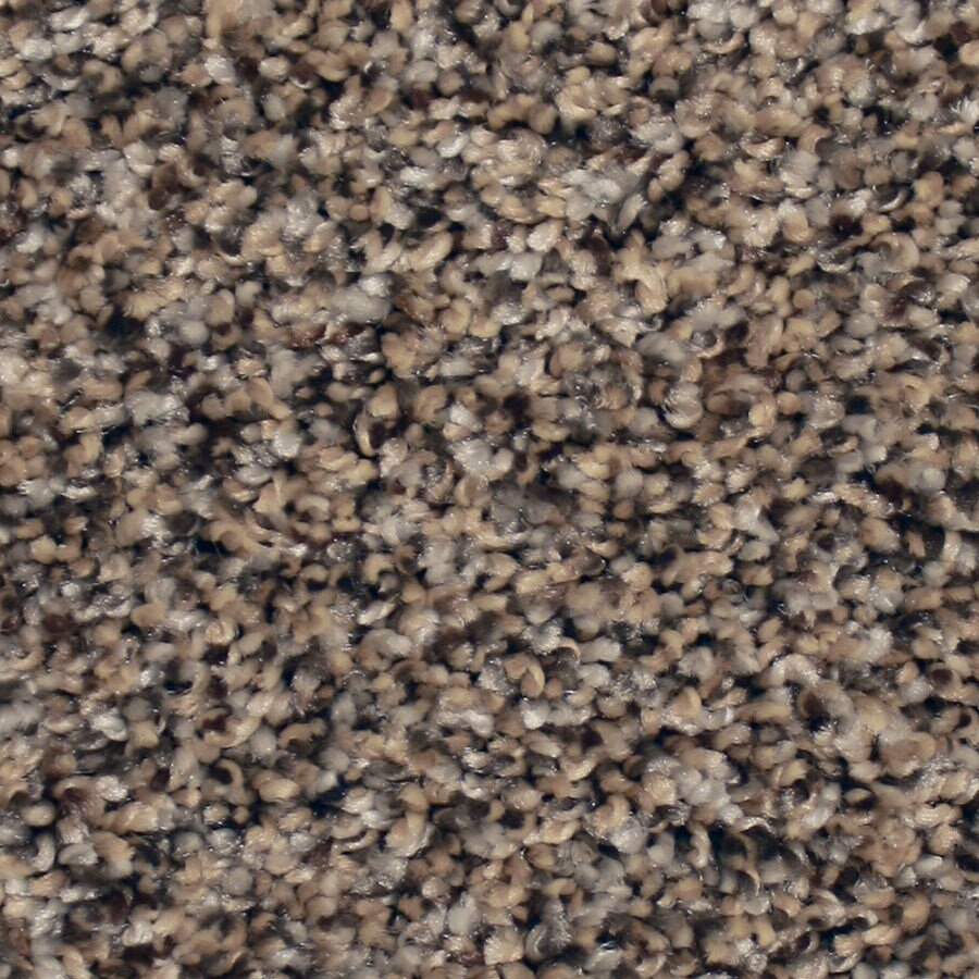 STAINMASTER Channing Essentials Lazy Stroll Plus Carpet Sample