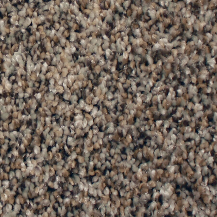 STAINMASTER Channing Essentials Island Trail Plus Carpet Sample