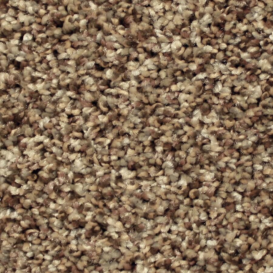 STAINMASTER Ventura Essentials Good Fortune Plus Carpet Sample