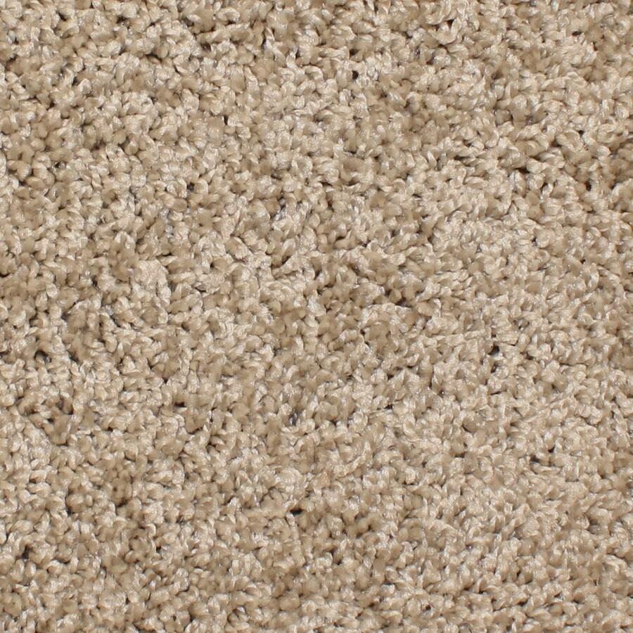 STAINMASTER Bronson Essentials Terrain Plus Carpet Sample