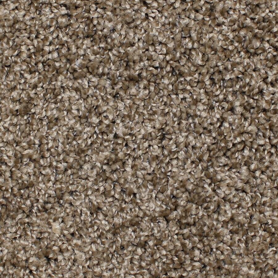 STAINMASTER Bronson Essentials Desert Wildlife Plus Carpet Sample