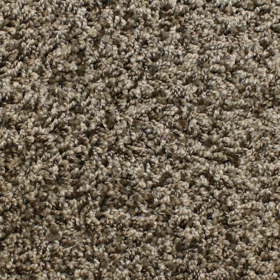 STAINMASTER Bronson Essentials Lone Star Plus Carpet Sample