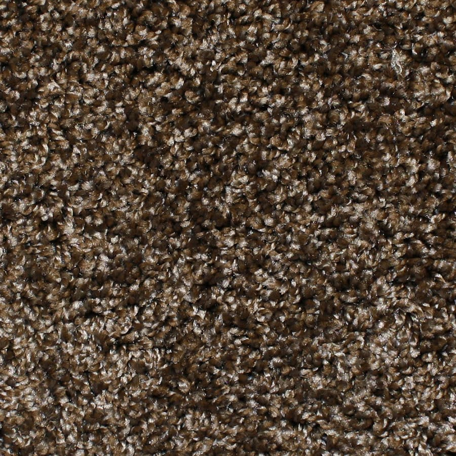 STAINMASTER Conway Essentials Main Stage Plus Carpet Sample