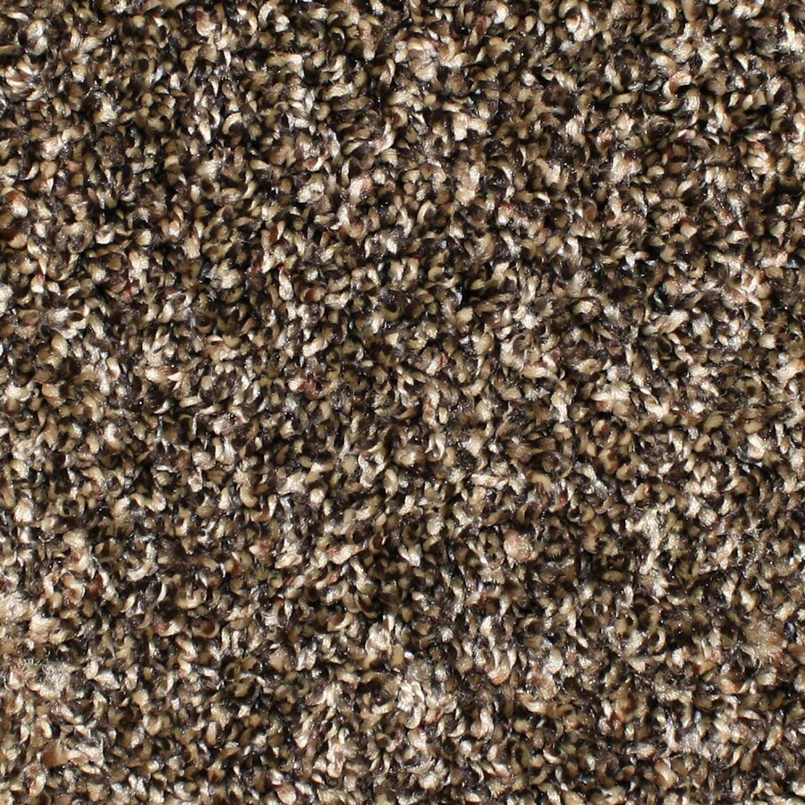 STAINMASTER Conway Essentials Scenic Beauty Plus Carpet Sample