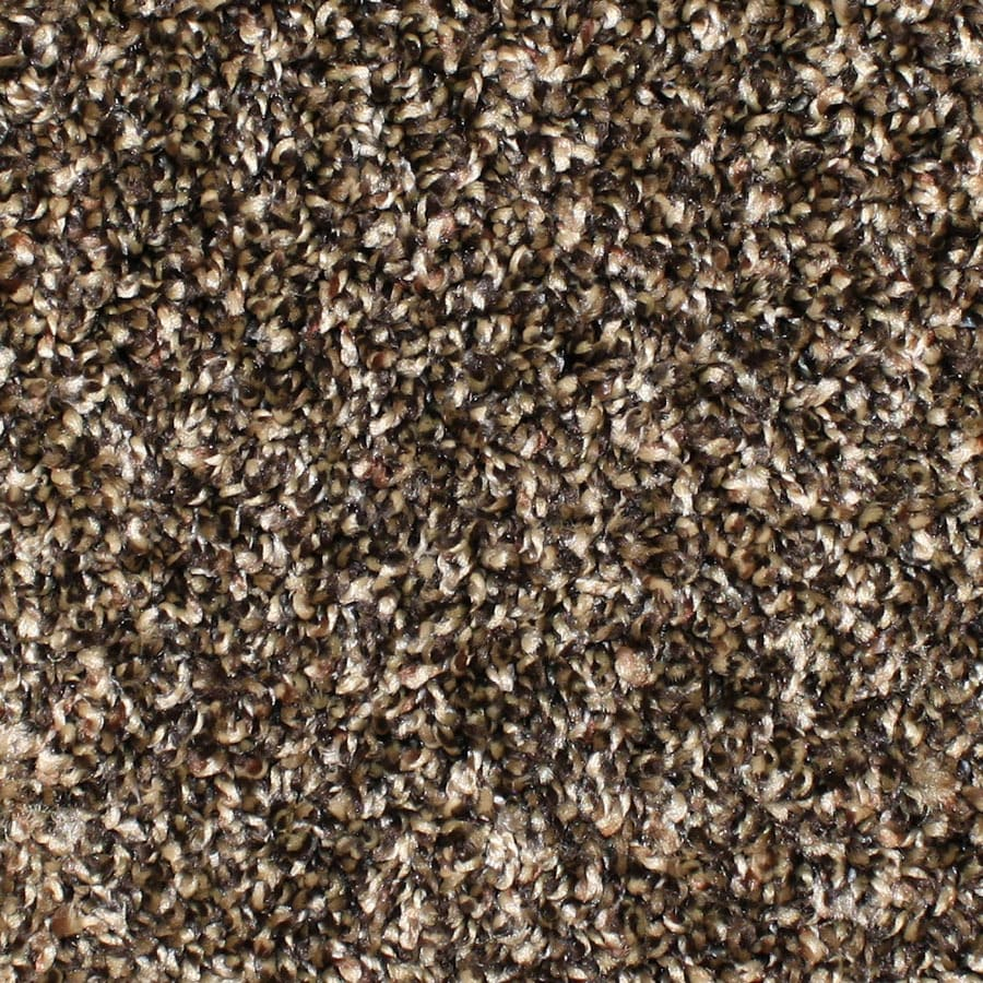 STAINMASTER Durand Essentials Scenic Beauty Plus Carpet Sample