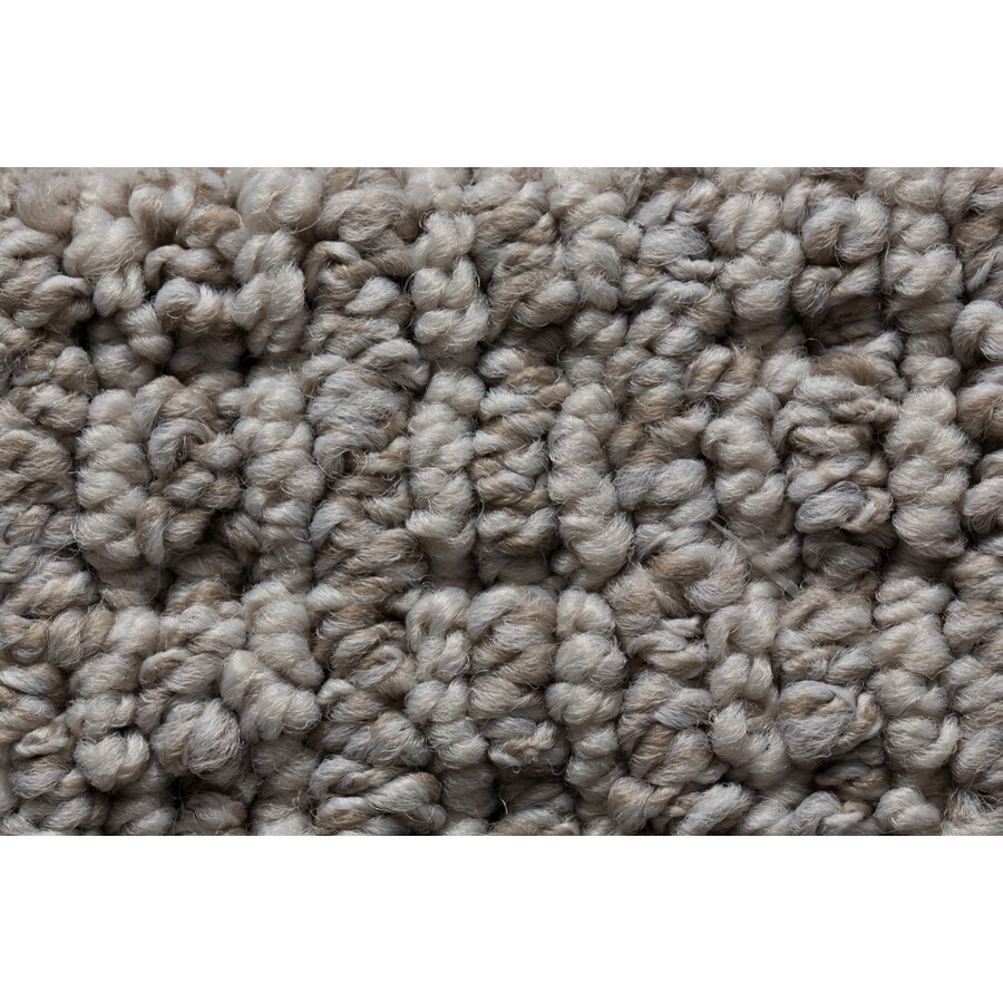 STAINMASTER Sojourn Active Family Concrete Oasis Berber Carpet Sample